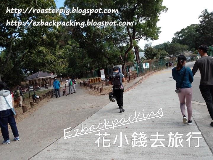 大棠山路點去大棠楓香林、千島湖觀景台
