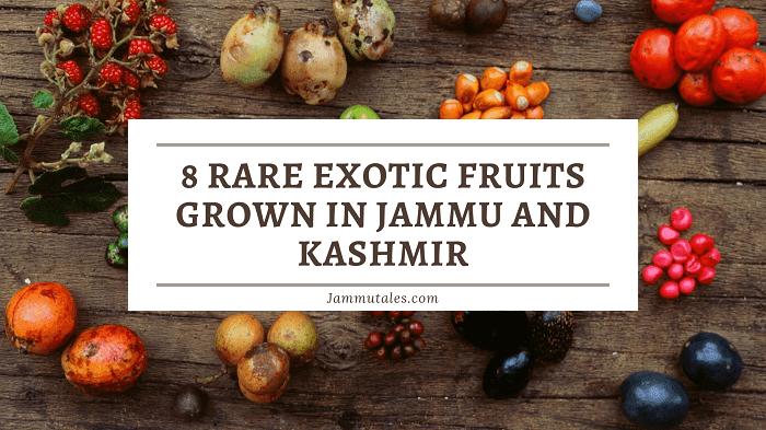 Fruits of Jammu Kashmir