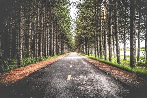 """مقتطفات روائية : رواية """"ما بعد الحكاية"""" للكاتب الأمريكي ريتشارد باورز"""