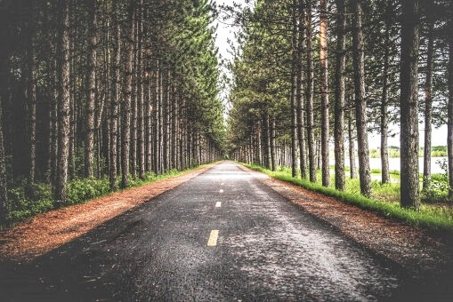 """مقتطفات روائية : مقتطف من رواية """"ما بعد الحكاية"""" للكاتب الأمريكي ريتشارد باورز"""