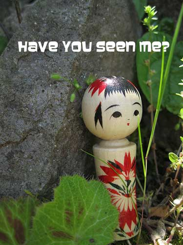 The Lost Kokeshi Mystery