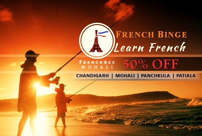 http://mohali.frenchace.com/