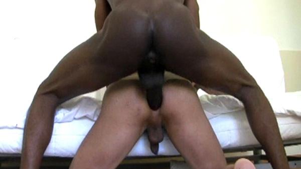caralhudo negro bareback