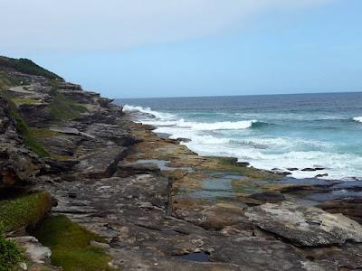 Photo spot at Bondi to Bronte coastal walk in Sydney