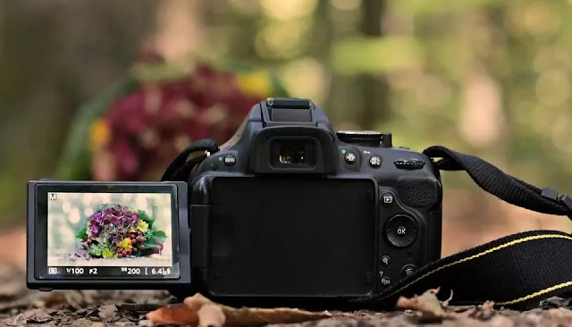 15 Best DSLR Cameras Under $500 in 2020|Reviews & Buyer's Guide