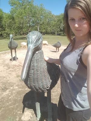 Darwin Public Art | 'Shorebirds' by Aly De Groot