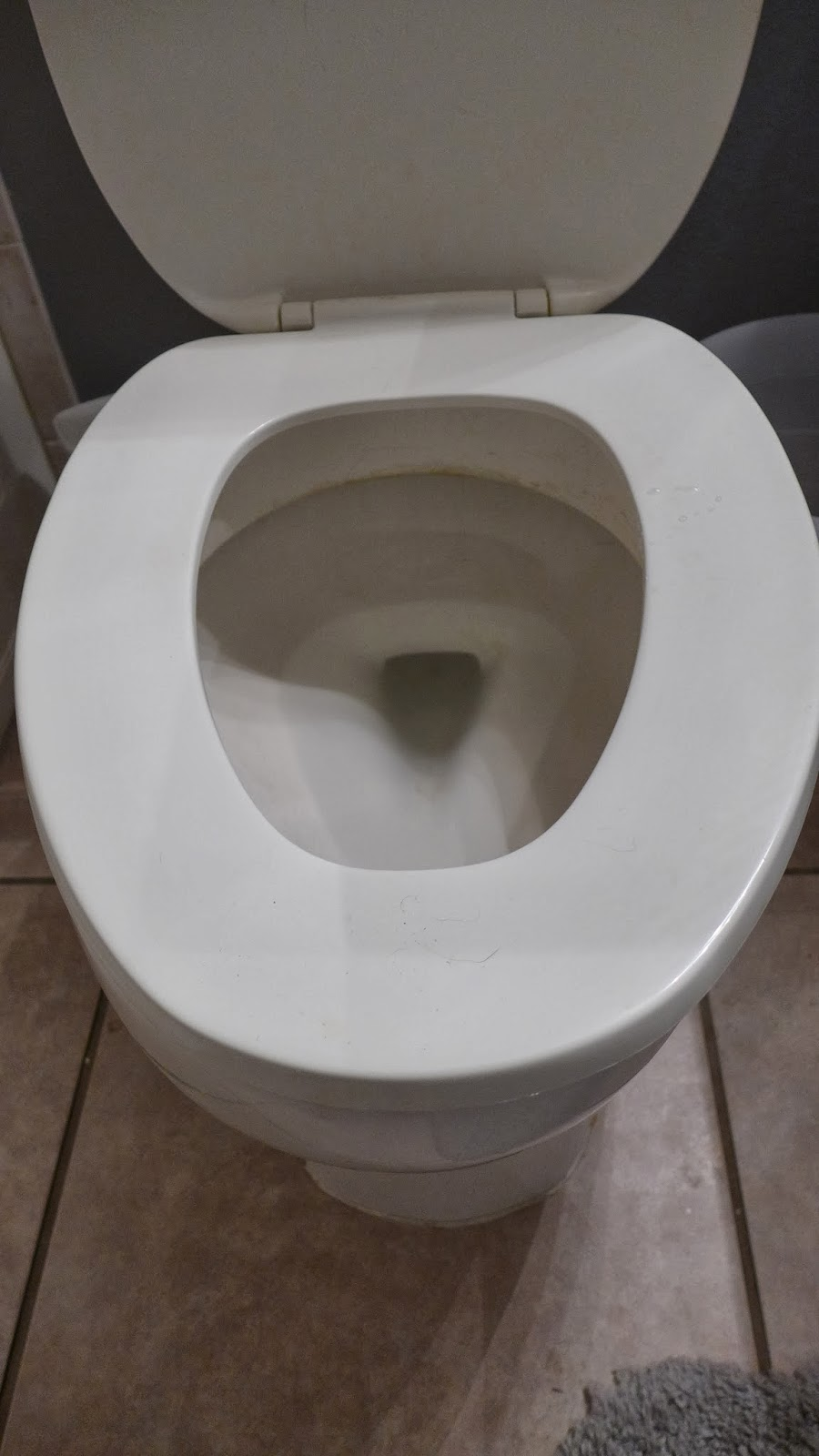 Diy Natural Toilet Bombs Explode Away Grime And Germs