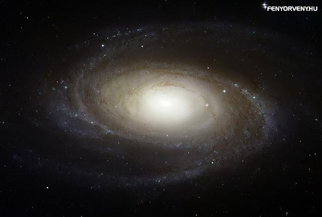 Nóvakitörés az M81 galaxisban