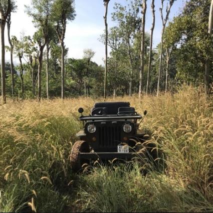 Pepper Trail wayanad plantation tours