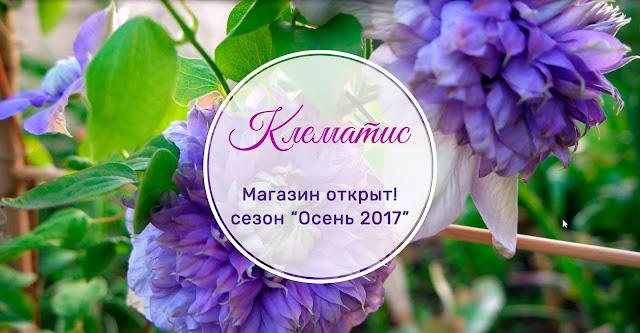 клематисы интернет магазин украина