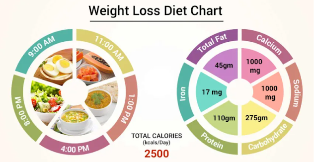 4 Popular Nutrition Plans for Weight Loss