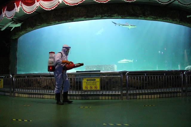 seaworld disinfektan