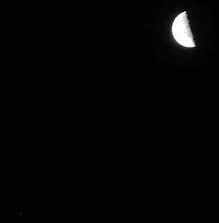 Moon and Mars (31/1/2016