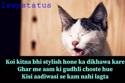 Funny status for whatsapp Facebook Instagram