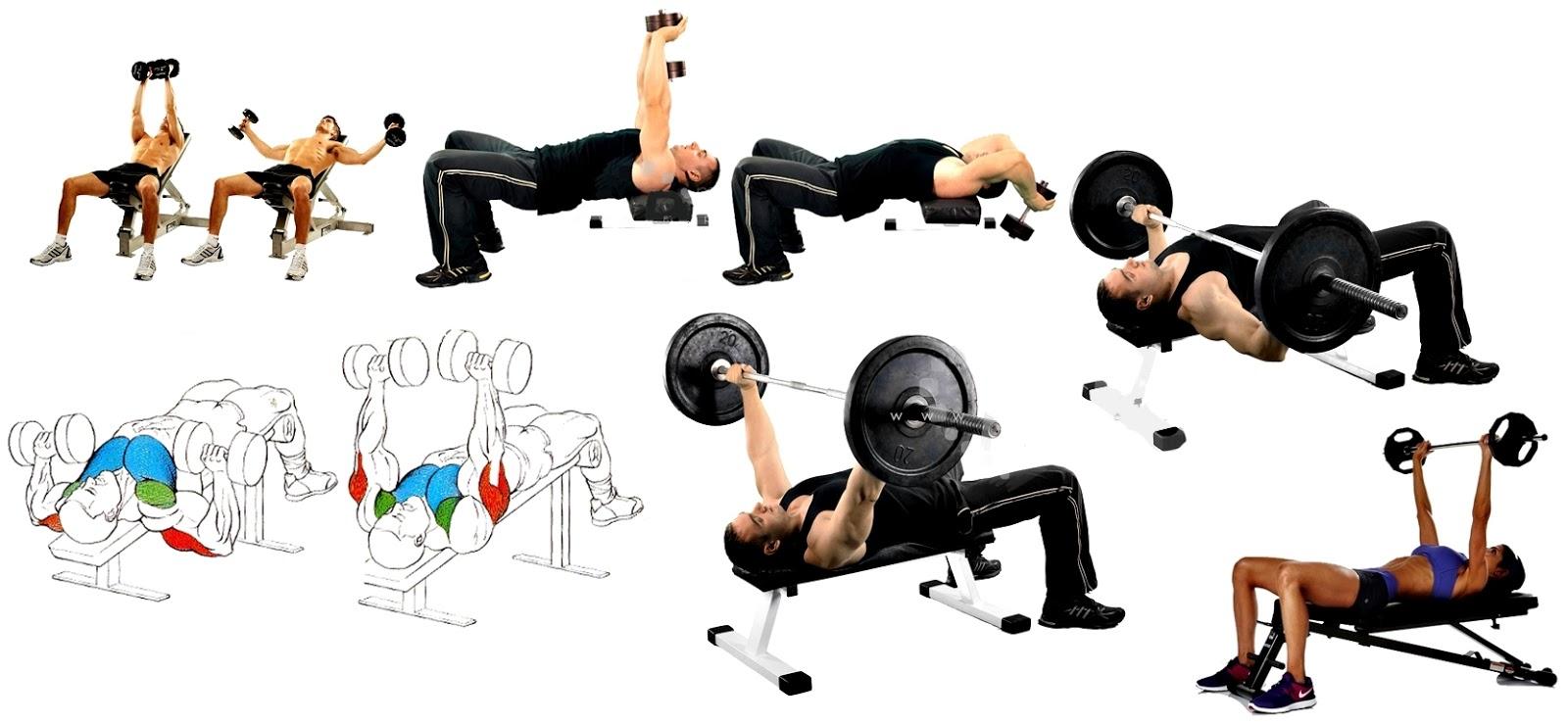 Ampliar o reducir la caja torácica con ejercicios es posible?