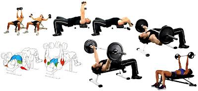 Ampliar o reducir caja torácica con algunos ejercicios es posible