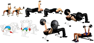 Ampliar reducir caja torácica ejercicios