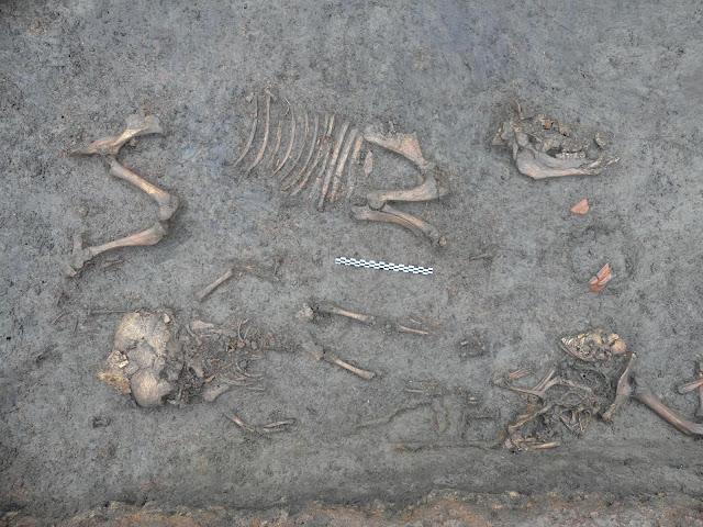 Exceptional child's grave from Gallo-Roman era found near Clermont-Ferrand