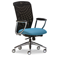 SitWell Ovation Chair