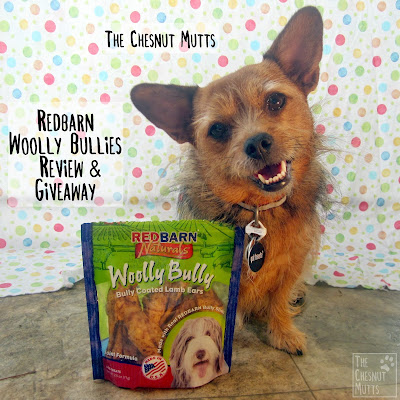 The Chesnut Mutts Redbarn Woolly Bullies Review and Giveaway