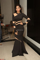Pranitha Subhash in a skin tight backless brown gown at 64th Jio Filmfare Awards South ~  Exclusive 184.JPG