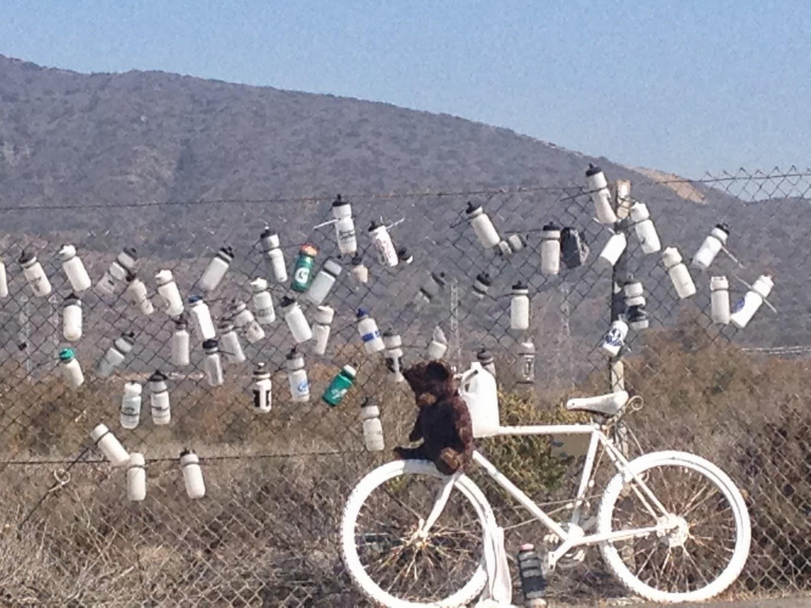 The San Diego Bikeist Stuff I See From My Bike