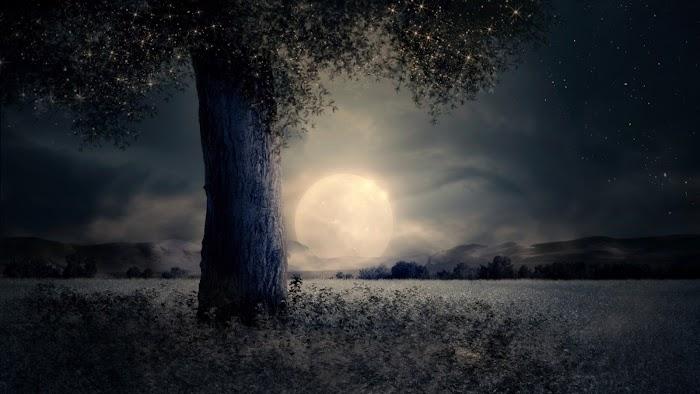 Начало рассеивающей Луны 11 августа 2020 года: прогноз для Знаков Зодиака