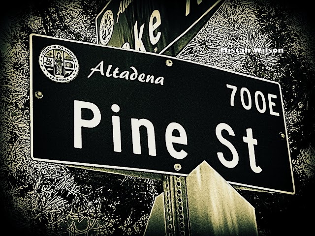 Pine Street, Altadena, California by Mistah Wilson