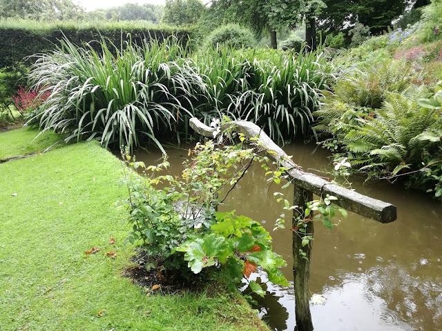 Bog Garden, ogród angielski