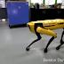Boston Dynamics'in yeni robotu görücüye çıktı