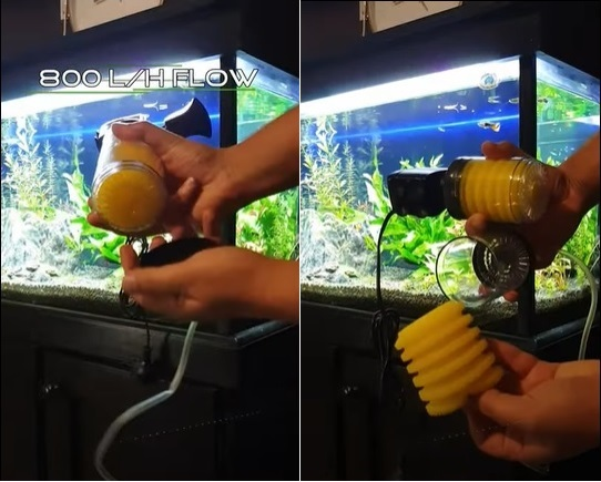 Disassembling Aquarium Internal Filter
