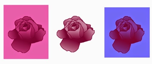 Rosen mit verschiedenen Hintergründen