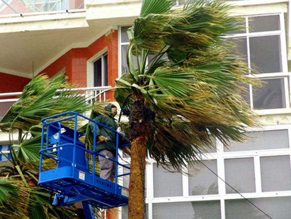 Los fuertes vientos previstos para el jueves 31 de octubre ponen en aviso a las isla de Gran Canaria, Tenerife, El Hierro, La Palma y la Gomera / Foto:  José Luis Sandoval