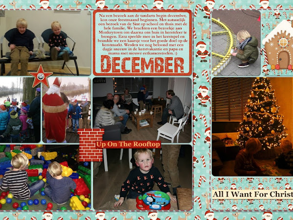Project Life December 2014