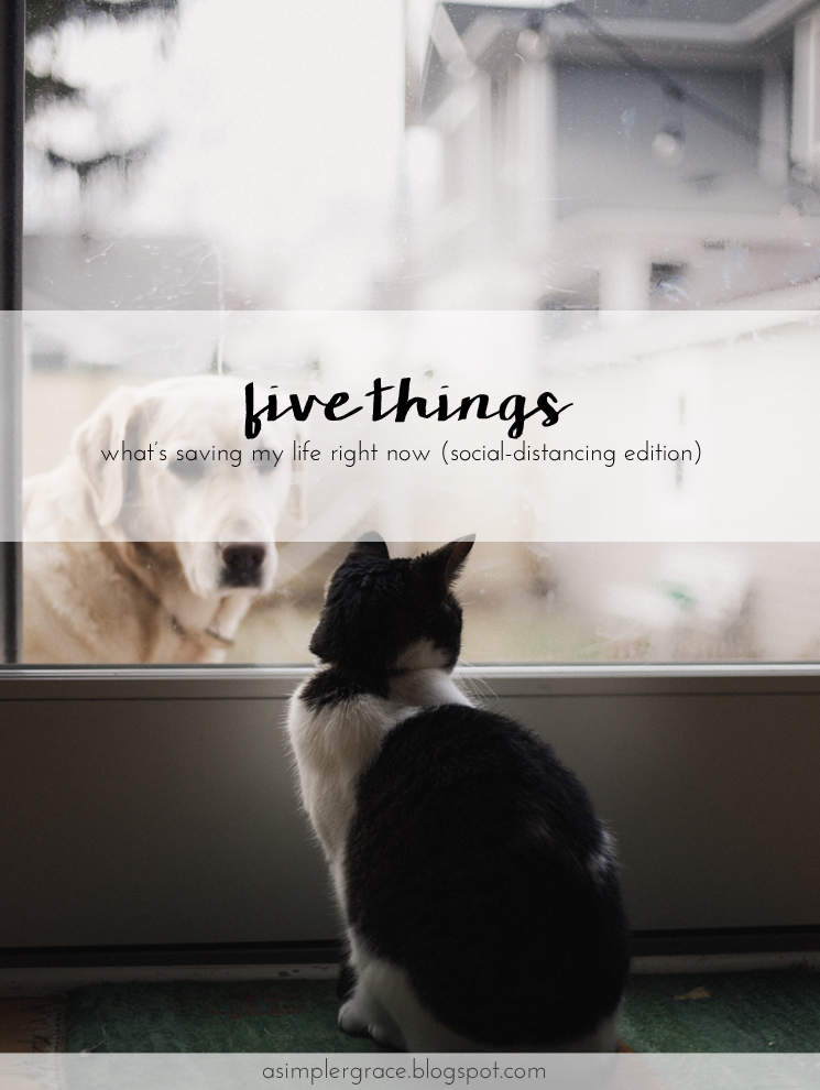 Five things that are saving my life right now and helping me through the quarantine. #fivethings #socialdistancing