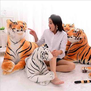 kado ultah untuk pacar boneka harimau besar