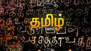 11th Tamil Study Material Collection