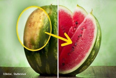Ένας αγρότης συμβουλεύει: Αυτά είναι τα 5 κόλπα για να επιλέγεις το τέλειο καρπούζι!