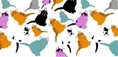 Q 6. How many kittens do you see here?