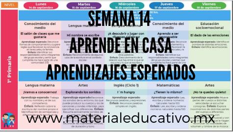 Semana 14 Aprende en Casa II Aprendizajes Esperados