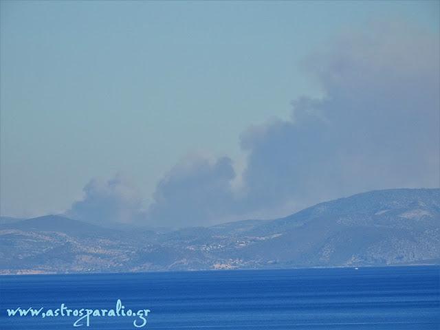 Μαίνεται η πυρκαγιά στο Μετόχι Ερμιονίδας στην Αργολίδα
