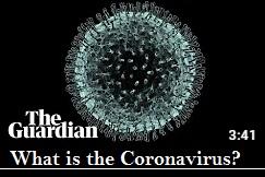 What is the Corona virus?