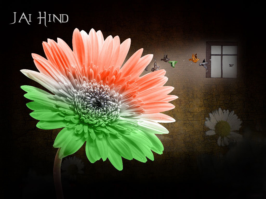 15 August Independence Day Of India,India History,Full Hd -8255