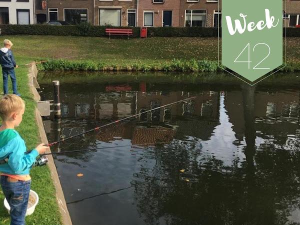 Week 42; Tentoonstelling, Concert, 'Nieuwe' Fiets, Vissen en Gezellig Borrelen!