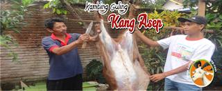 Kambing Guling di Bandung