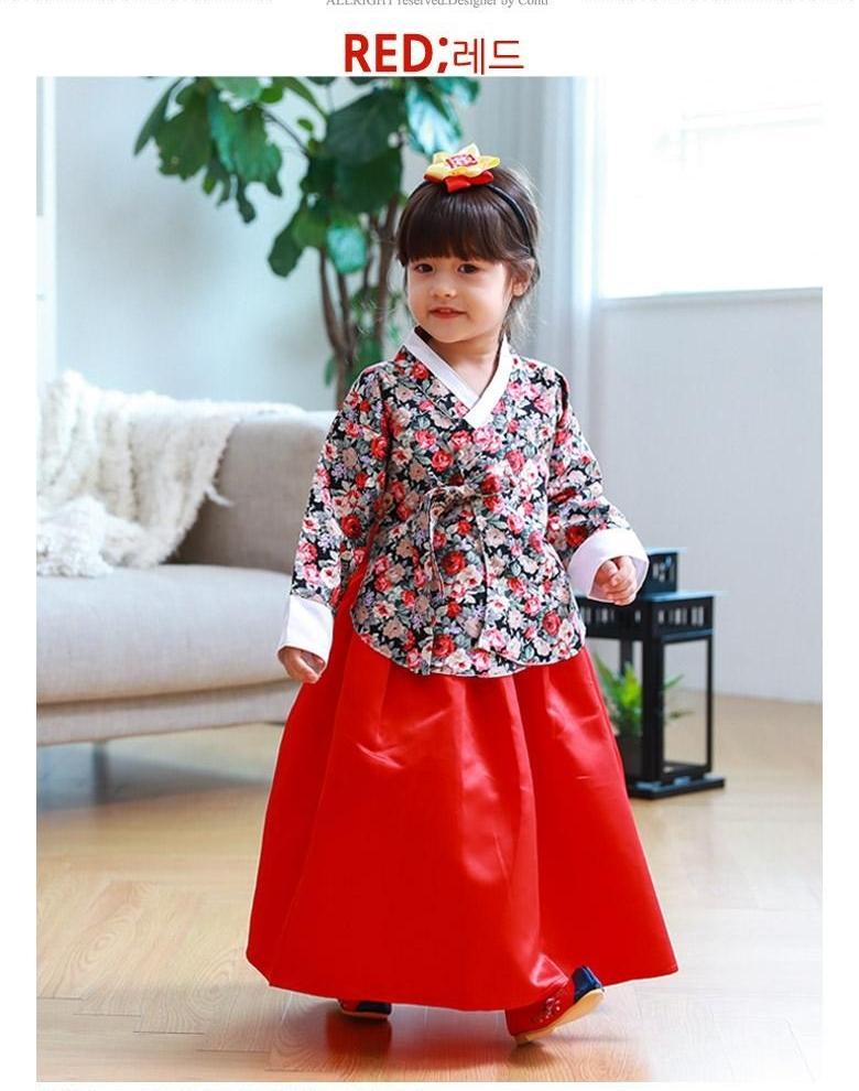 9fa2a68fa Hanbok Kids Girls Dress Stage Costume Cute Dresses Korean ...