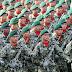 Bimbel TNI dan Polri Maluku Utara Murah