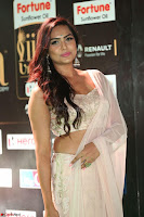 Prajna in Cream Choli transparent Saree Amazing Spicy Pics ~  Exclusive 020.JPG
