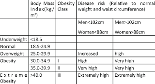 classification-of-overweight-and-obesity-Classification-of-Overweight-and-Obesity