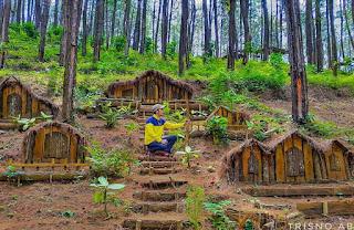 Bukit Kertojoyo